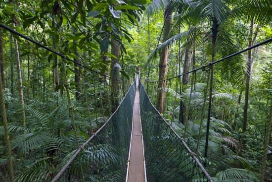 Malezja, Taman Negara